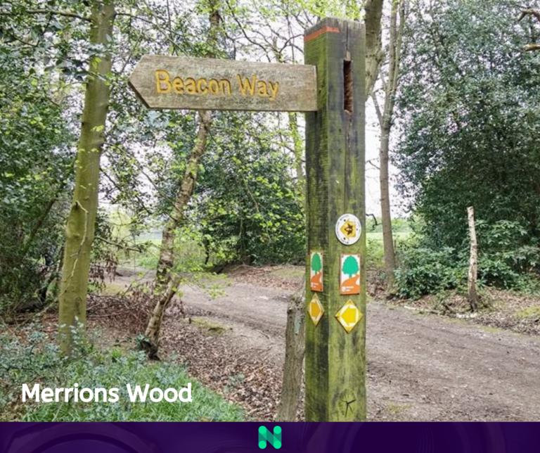 merrions wood